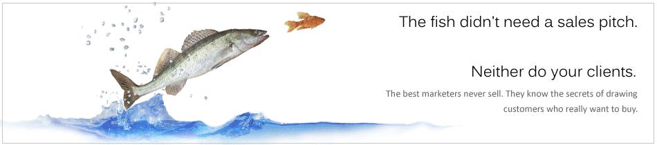 inner-header-fish
